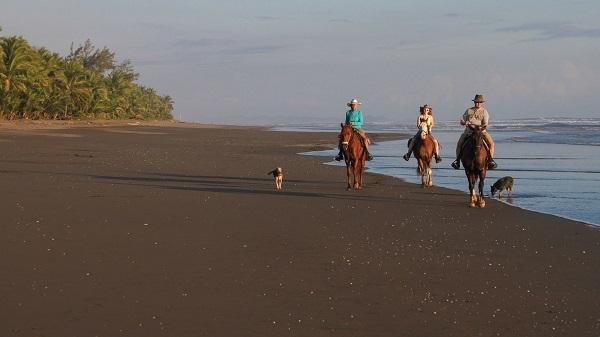 Balade à cheval sur les plages du Costa Rica