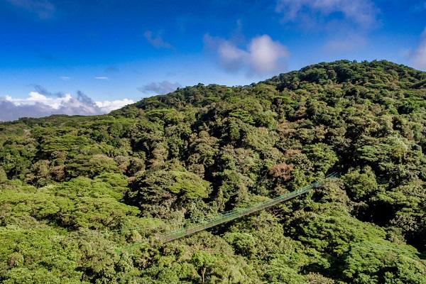 Les ponts suspendus du volcan Arenal, region de la Fortuna au Costa Rica