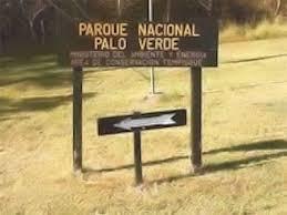 Le parc national de Palo verde