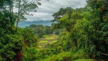 Monument national de Guayabo Turrialba