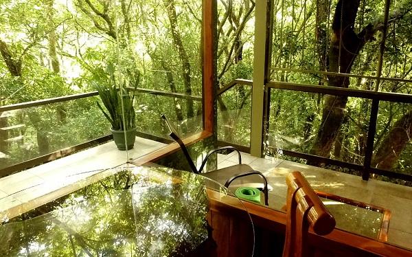 Monteverde, Hidden Canopy, Costa RIca, vacances sur mesure