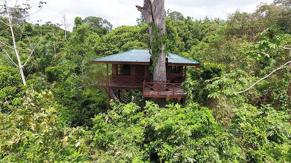 Lodges et hotels d'exception Costarica, Maquenque lodge, Tree house, chambre dans les arbres