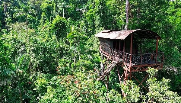 Maquenque Eco lodge, voyage sur mesure au Costa Rica