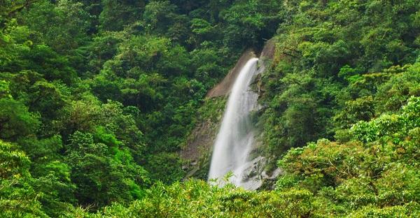 Les entrees des parcs nationaux, Parc de Tapanti, vallee d'Orosi, Cartago, Costa Rica