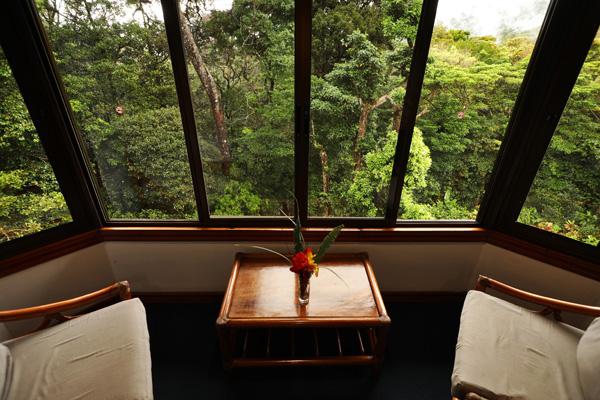 Santa Clara, vue la forêt tropicale
