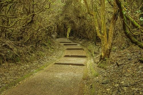 Sentier du parc national du volcan Poas