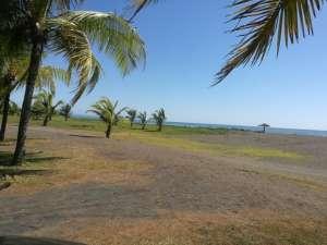 Parrita au nord de Manuel Antonio playa Palo seco