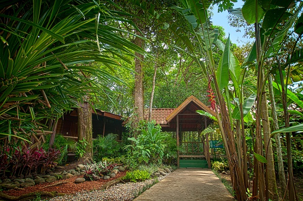 Pachira Lodge Hotels de Tortuguero Costa Rica