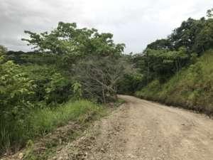 Santa Teresa Malpais Manzanillo piste de la peninsule de Nicoya, Costa Rica