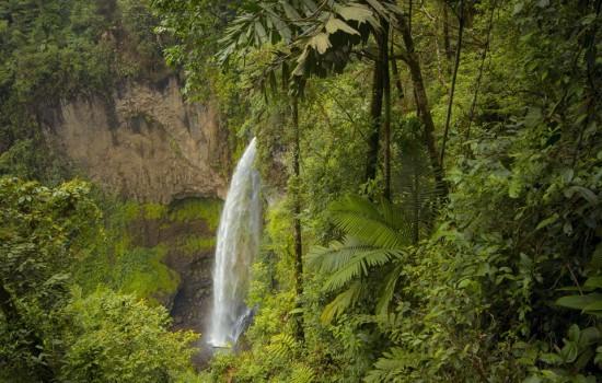 Cascade a La Tigra Rain forest lodge la Tigra, volcan Arenal, La Fortuna Costa Rica