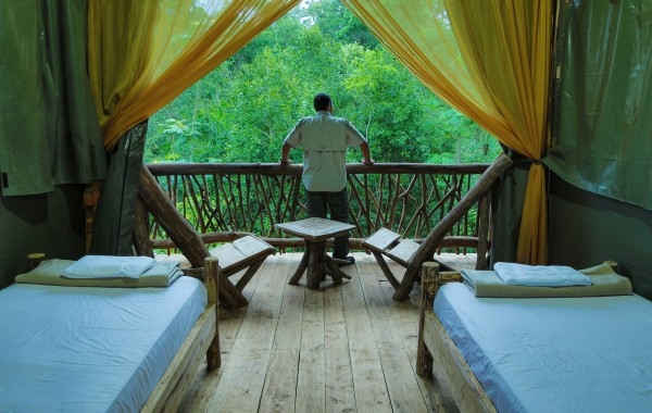 La Tigra Rain forest lodge chambre dans les arbres, la Tigra, volcan Arenal, La Fortuna Costa Rica