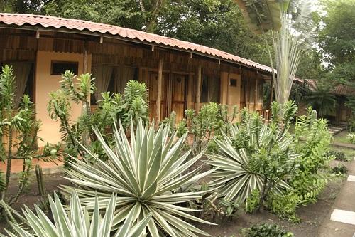 Turtle Beach Lodge bungalow Hôtels de Tortuguero costa rica