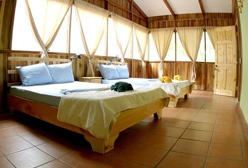 Chambre au Turtle Beach lodge