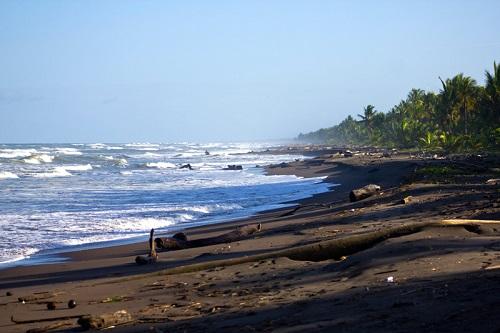 plage au Turtle Beach lodge de Tortuguero