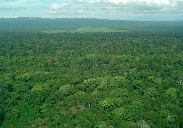 Parc national de Corcovado, peninsule de Osa