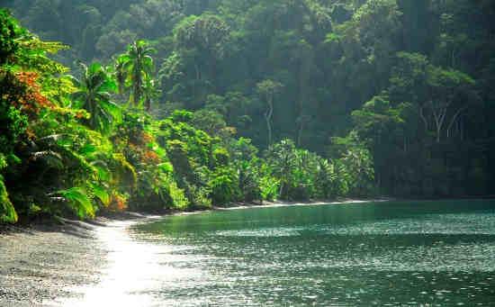 Parc National de Corcovado, peninsule de Osa, Costa Rica