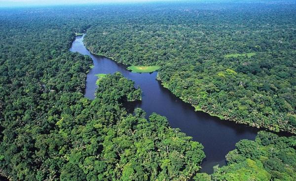 Le parc national de Tortuguero vu du ciel.