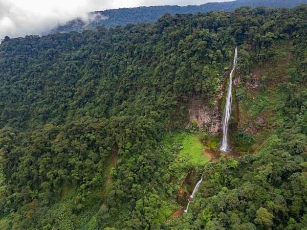 Le parc national Braulio Carrillo, Costa Rica.