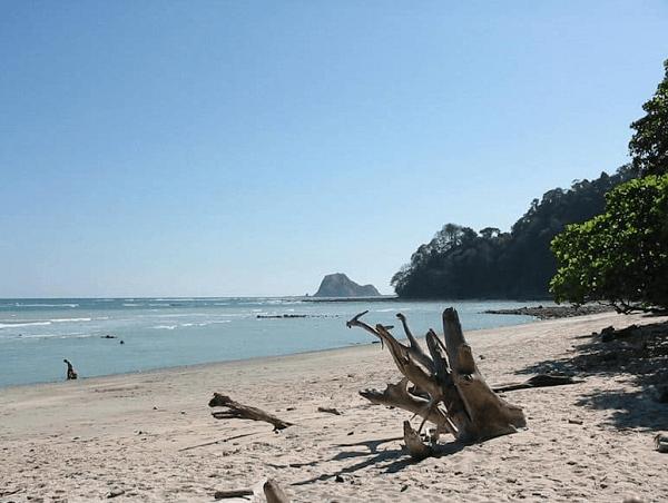 La plage de Cabo Blanco, réserve naturelle et séjour sur mesure au Costa Rica