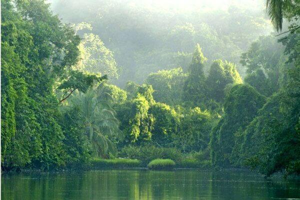 Tarifs et achat des entrées des parcs nationaux du Costa Rica, séjour sur mesure au parc national de Corcovado Costa Rica