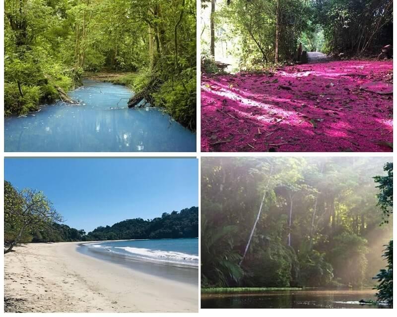 Sejour sur mesure au Costa Rica Des paysages d'une grande variété au Costa Rica.