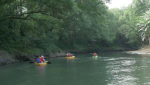 Activites, Kayak sur le Rio San Carlos, Costa Rica