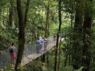 Ponts suspendus au volcan Arenal