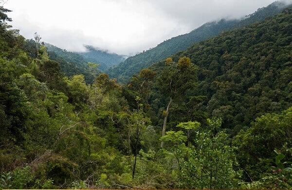 San Gerardo de Dota, Montagnes de Talamanca, parc de los Quetzales