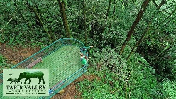Voyage sur mesure Costa Rica, Plateforme d'observation du tapir dans la vallée du tapir a Bijagua