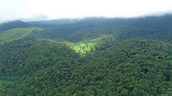 Voyage sur mesure Costa Rica, La Vallée du Tapir, Bijagua, Rio Celeste, Costa Rica